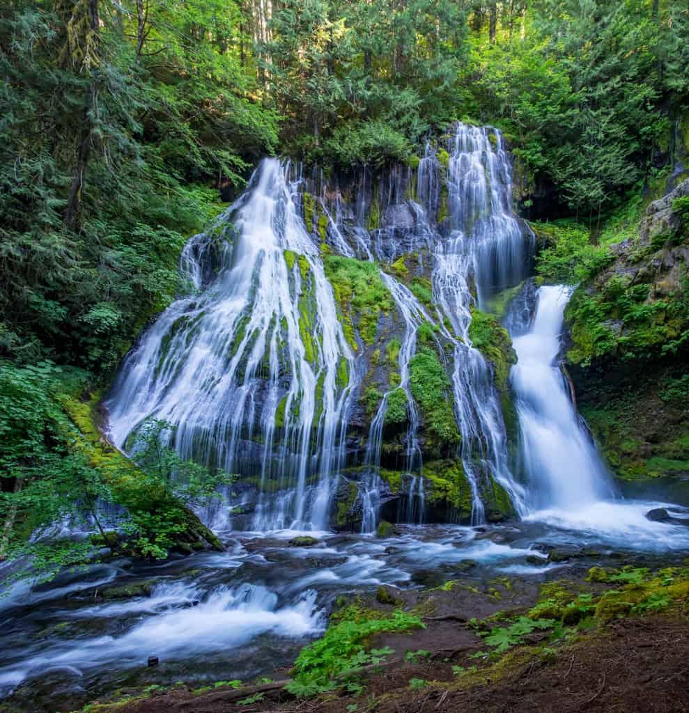 Panther Creek Falls #4