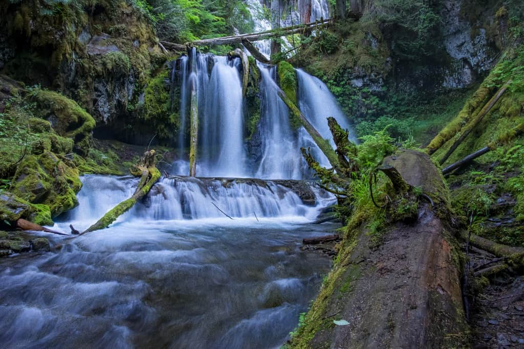 Isolated Lower Panther Creek Falls